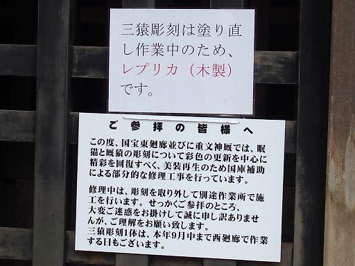 412h-shirase328.jpg