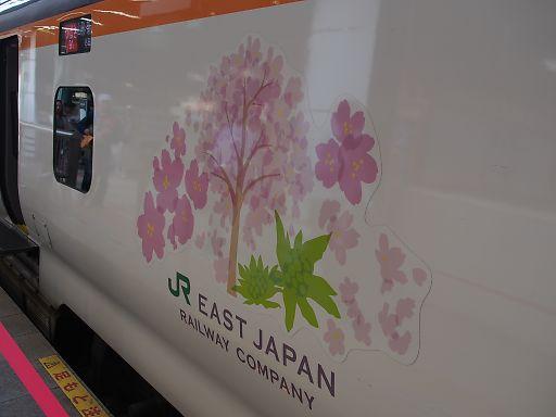 612c-yamagata517.jpg