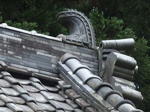 626d-shibi780.jpg