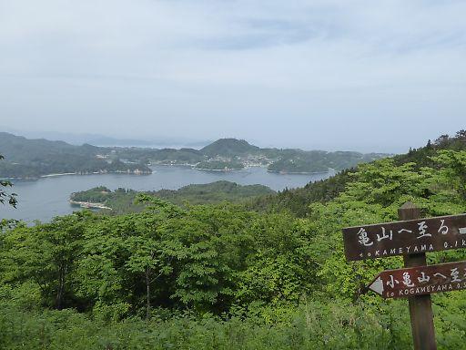 0622a-kameyama511.jpg