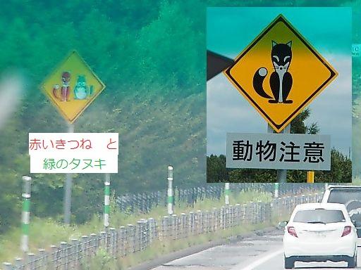 a-kitsune770.jpg